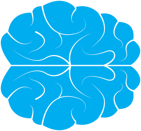 Modafinil for ADHD Brain