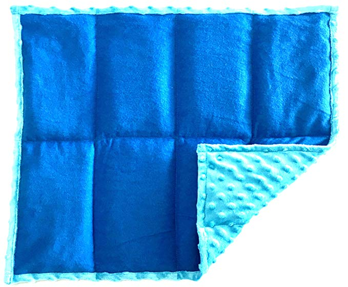 Weighted Blankets for ADHD The ReachTherapy Weighted Sensory Lap Pad