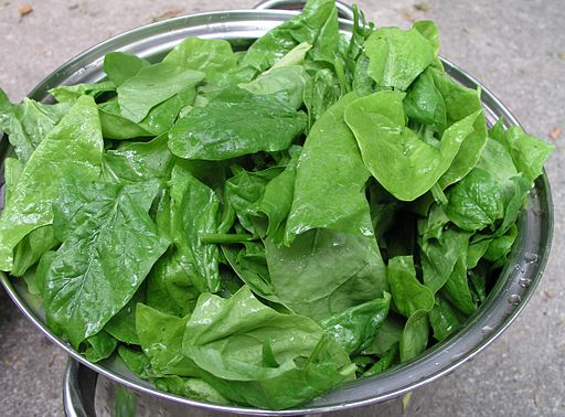 Fruits and Vegetables for ADHD Spinach