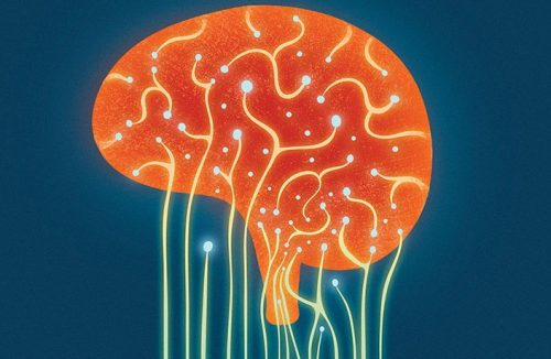 Become Happier with ADHD Through Autonomy Control Your Brain